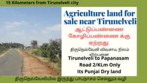 Agricultural land for sale near Tirunelveli