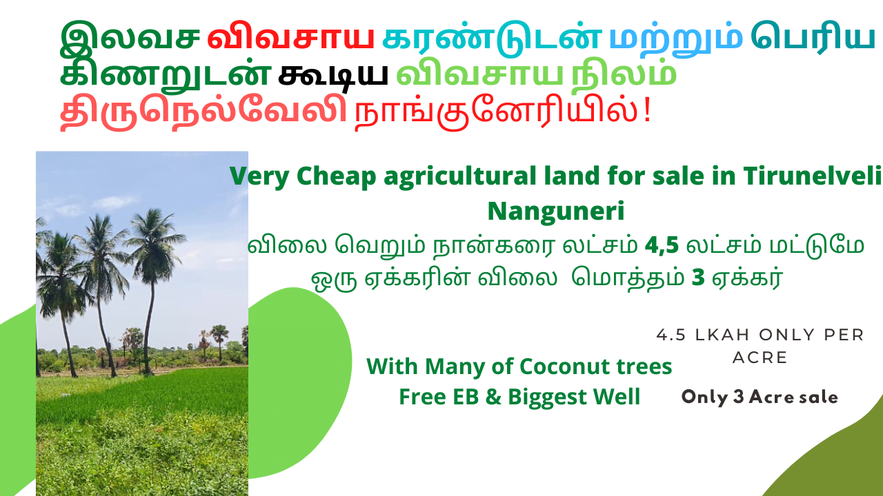 Cheap Agricultural land for sale in Tirunelveli Near Nanguneri-4.5 lakhs Per acre Free ELectricity