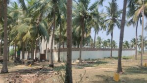 Commercial land for sale in Minjur Chennai1 300x169